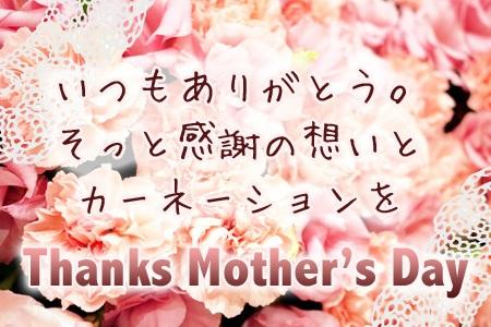 母の日プランイメージ.jpg